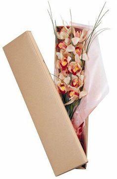 Κουτί μέ συμπίδιουμ Floral, Food, Flowers, Essen, Meals, Flower, Yemek, Eten