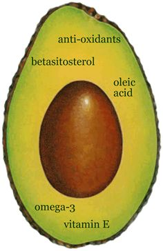 Avocados have been called the perfect food by some, and this title doesn't come simply from its role as the primary ingredient in guacamole. They are one of the sexiest vegetables out there. Correction, they are one of the sexiest fruits. Actually, avocados are a bit of everything; they are actually berries in disguise.  - See more at: http://worldtruth.tv/2013/09/#sthash.7lzSKW6d.dpuf