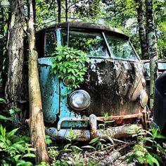 Fahrvergnügen? Farfrommoving! http://goodhal.blogspot.com/2013/04/debris-042.html #Abandoned #Debris #Microbus #Volkswagen