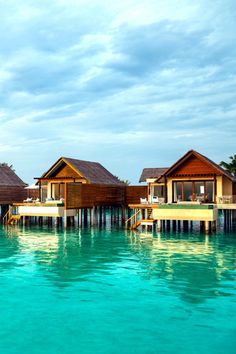 Water Studios With Pools from the water ~ Niyama Maldives
