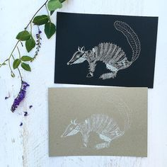 White Ink Numbat  . I did a bit of print experimentation with a few of my designs before I left for holiday. How do you like my Numbat out of Natives printed in white ink? Should I add it as a new listing?  . . . . . #numbat #numbatoutofnatives #gumdots #myhanddrawnheart #finelinerart #finelinerartist #finelinerdrawing #whiteink #whiteinkprint #whiteinkprinting #peterkinpaper #whiteonblack #whiteinkonbrownpaper #whiteinkonblackpaper #marsupial #threatenedspecies #endangeredspecies…