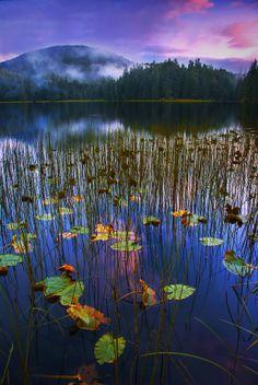 Twilight colors in Alaska (Photo by Carlos Rojas)