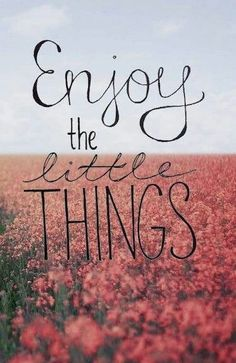 Enjoy the little things that life swings at you don't be afraid let loose your life and fly!! Enjoy what you can and love and enjoy who you can.. We are only here once to live life to fullest....