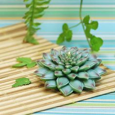 Succulent Plants Shaped Birthday Candle
