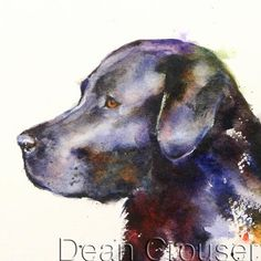 """Black Lab - """"BLACK LAB"""" signed and numbered giclee' print from an original labrador watercolor painting by Dean Crouser (original has been sold). This print is available in a variety of size on the drop down menu. Watercolor Bird, Watercolor Animals, Watercolor Paintings, Watercolors, Canvas Art, Canvas Prints, Dog Prints, Canvas Size, Black Labrador"""