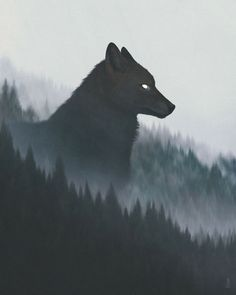 Rumors of Northrend - Anime Wolf Anime Wolf, Fantasy Creatures, Mythical Creatures, Fenrir Tattoo, Wolf Wallpaper, Cool Wallpapers Wolf, Wolf Spirit, Wolf Tattoos, Nature Tattoos