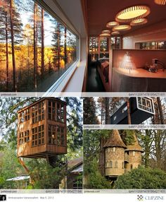 I wanna live in a treehouse