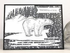 Polar Bear Images, Polar Bears, Bear Card, Morning Live, Monday Morning, Bird Cards, Christmas Minis, Animal Cards, Winter Cards