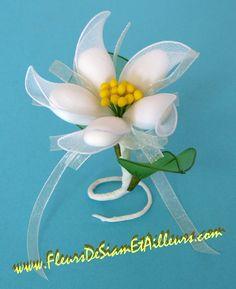 Fleur avec dragées                                                                                                                                                                                 Plus