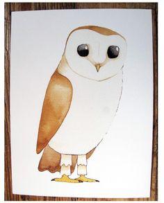'Barn Owl' by Matt Sewell