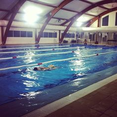 If Youd Rather Not Run: 10 Reasons to Start Swimming Now!