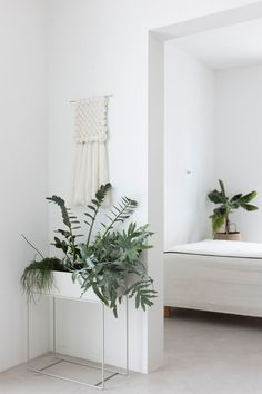 Ferm Living plant box, one of our favourites and it fits perfectly into so many spaces! Green living made easy! Cosy Interior, Interior And Exterior, Interior Design, Interior Styling, Minimalist Interior, Minimalist Home, Discount Bedroom Furniture, Plant Box, Pinterest Home