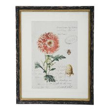Botanic with Bee Framed Graphic Art