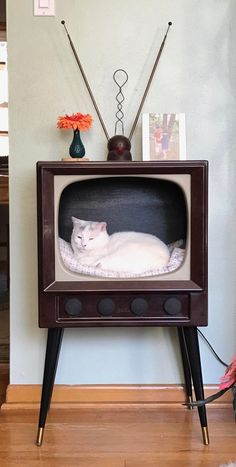 Kitty TV anyone? My kitty Bubbles in an old early TV I found in the trash. I removed the picture tube cut down & modified the box refinished the cabinet added knobs and legs. Its now a favorite kitty napping spot! Crazy Cat Lady, Crazy Cats, Cute Baby Animals, Animals And Pets, I Love Cats, Cute Cats, Pet Furniture, Here Kitty Kitty, Beautiful Cats