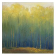 Deep Woods in Summer Stretched Canvas Print by Teri Jonas at Art.com