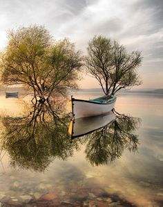 Reflections of a lakeside boat!