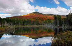 <3  New Hampshire