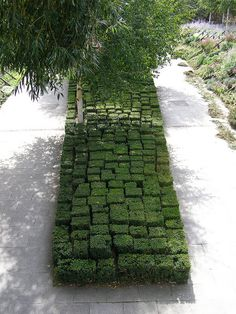 Buxus shaped in blocks of different height - Parc André Citroën, Paris ... interesting sculpting -- kinda looks like a tetris game in greenery