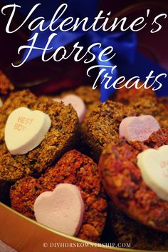 DIY: Do It Yourself How to Make Valentine's Day Horse Treats Recipe