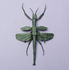 paper bug
