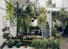 Met deze planten in de slaapkamer slaap je veel beter