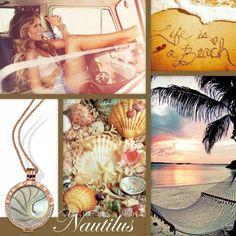 Nautilus # Beach
