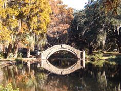 Autumn City Park New Orleans
