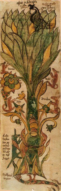 Yggdrasill est l'arbre cosmique de la mythologie nordique. Placé au centre de l'univers, il unifie les différents mondes. Il est ici représenté dans un manuscrit islandais du XVIIe siècle. Pour en savoir plus: http://www.fafnir.fr/yggdrasill.html.