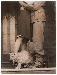 """""""Soldier's goodbye & Bobbie the cat"""", c. World War II by Sam Hood (by State Library of New South Wales collection) Romance Vintage, Vintage Love, Vintage Dior, Vintage Versace, Old Pictures, Old Photos, Cute Pictures, Vintage Photographs, Vintage Photos"""