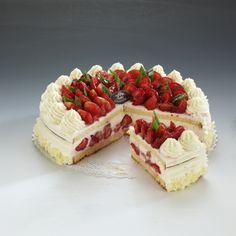 Tort Jogurtowy Na delikatnym biszkopcie warstwa świeżych owoców sezonowych przykryta naturalnym jogurtem z bitą śmietaną. Całość zamknięta cienką warstwą biszkoptu, bogato dekorowana owocami zanurzonymi w żelu.