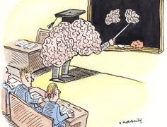 Separating neuromyths from science in education - opinion - 02 September 2013 - New Scientist Neuroplasticity, Neuroscience, Autism Information, Things That Bounce, Things To Come, Brain Based Learning, Habits Of Mind, Multiple Intelligences, New Scientist