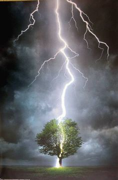 Mother Nature Tree Art Awesome Ideas For 2019 Mother Nature Costume Halloween, Lightning Cloud, Beautiful Places, Beautiful Pictures, Beautiful Scenery, Sea Photography, Design Fields, Photoshop, Landscape Artwork