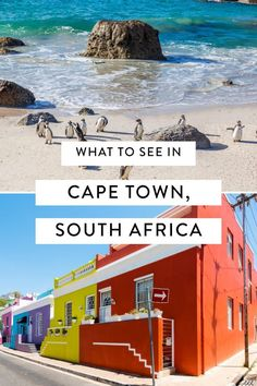 africa travel beautiful places - What To See in South Africa Highlights of Cape Town Africa Destinations, Travel Destinations, Cape Town South Africa, Cultural Experience, Beautiful Places To Travel, Africa Travel, Luxury Travel, Adventure Travel, Highlights