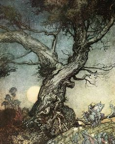 Arthur Rackham, Art And Illustration, Book Illustrations, Botanical Illustration, Art Magique, Illustrator, Edmund Dulac, Spirited Art, Fairytale Art