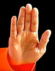 When you visit a temple & see hand MUDRAS of deity, pl.