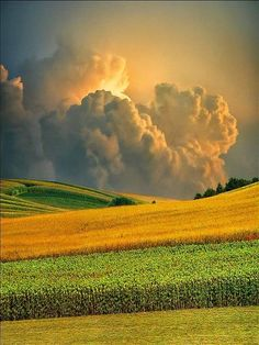 Oh beautiful for spacious skies, for waving fields of grain...