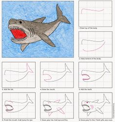 Art Projects for Kids: Draw a Megalodon Shark