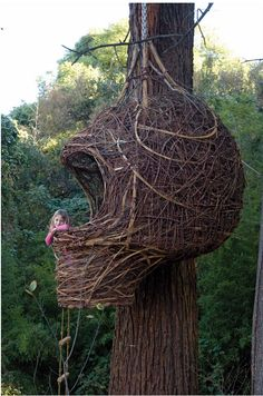 """how cool is this """"tree house""""?"""