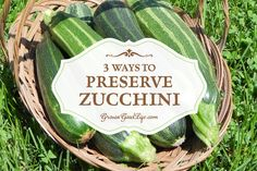 Are you sick of Zucchini yet? After you have baked, sautéed, stuffed, and grilled about as much as you can stand. Here are 3 Ways to Preserve Zucchini to help you deal with the excess crop. Freezing Vegetables, Canning Vegetables, Fruits And Veggies, Preserving Zucchini, Preserving Food, Growing Zucchini, Pots, Zucchini Squash, Dehydrated Food