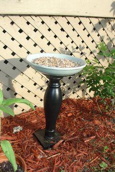 Fresh Plate: DIY Bird Feeder