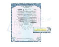 State Of Michigan Apostille Issued By Ruth Johnson Of A Document