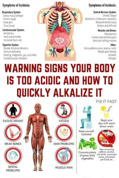 Warning Signs Your Body is Too Acidic and How to Quickly Alkalize It. - Warning Signs Your Body is Too Acidic and How to Quickly Alkalize It. Warning Signs Your Body is Too Acidic and How to Quickly Alkalize . Health And Wellness, Health Fitness, Holistic Nutrition, Nutrition Guide, Nutrition Education, Beef Nutrition, Health Retreat, Fitness Blogs, Nutrition Data