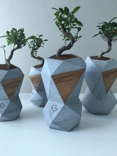 Jan Lamr and Gravelli design Concrete Award