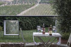 Visit and Tasting | Castello di Ama