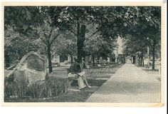 1950s litho PC view of Clarion PA Veteran's Memorial Park Clarion County