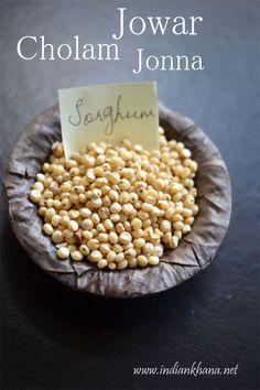 Sorghum-Jowar-Cholam