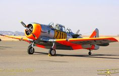 Warlock Photography: Harvards operated in South Africa