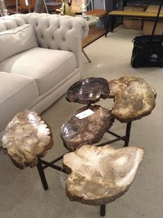 coffee table made of petrified wood