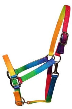 RAINBOW-Western-Horse-Halter-Beautiful-Coloful-3-Ply-New-Horse-Tack