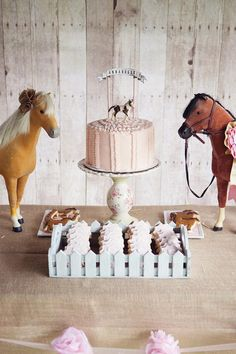 Vintage Pony Party Planning Ideas Supplies Idea Cake Decorations